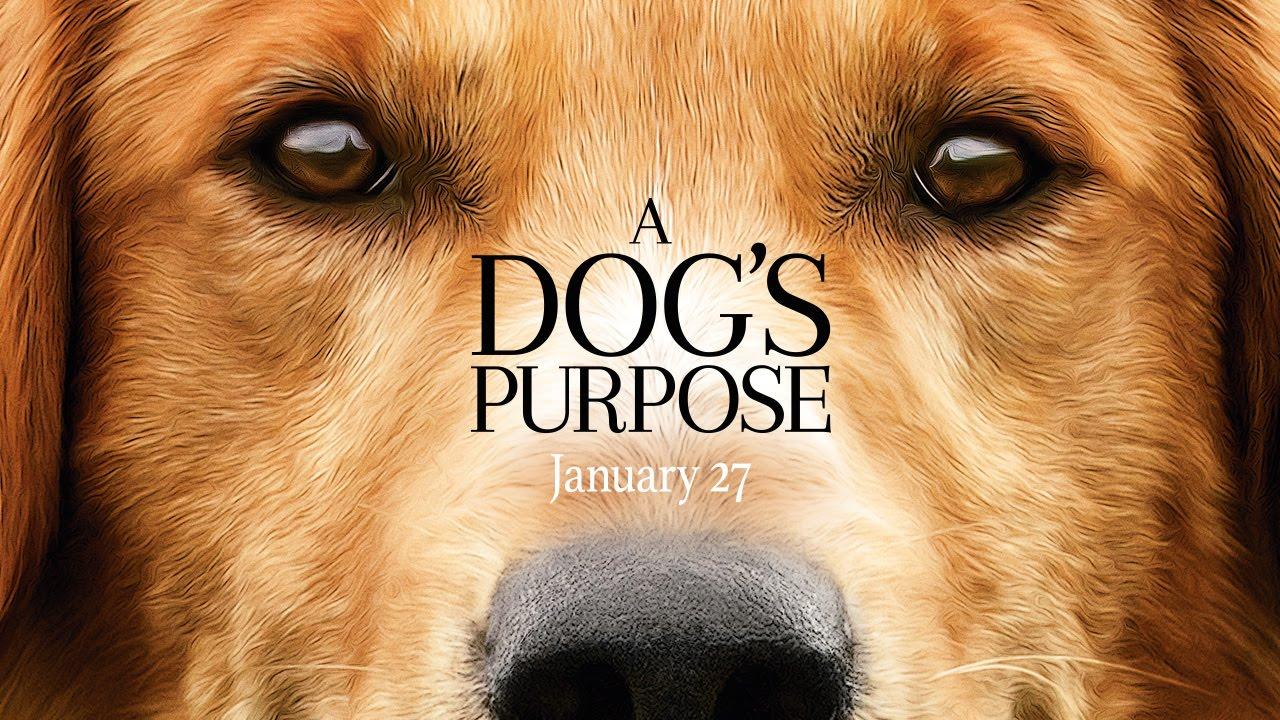 La Razón de Estar Contigo (A Dog's Purpose) – Soundtrack, Tráiler