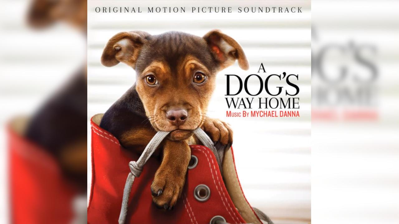Mis Huellas a Casa (A Dog's Way Home) – Sountrack, Tráiler
