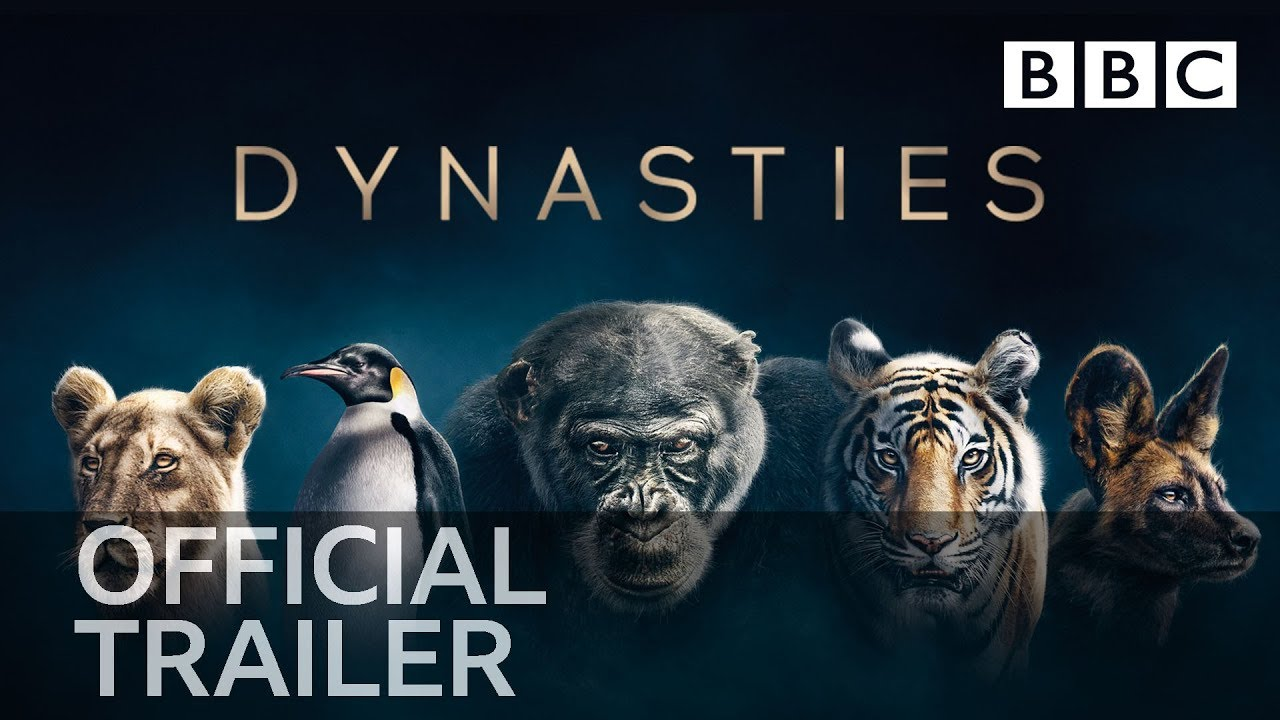 Dynasties (Serie Documental) – Soundtrack, Tráiler
