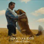La razón de estar contigo: Un nuevo viaje (A Dog's Journey) – Tráiler
