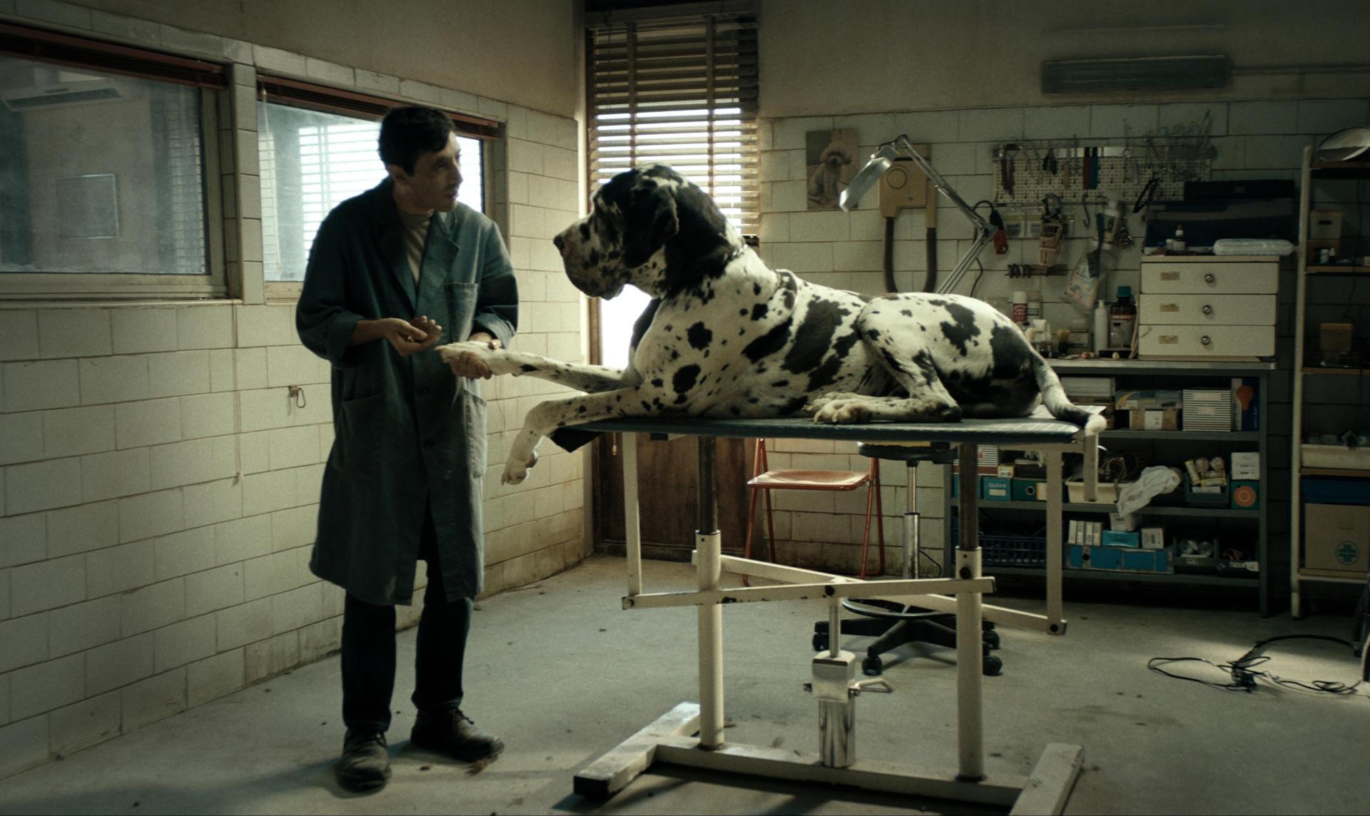 Dogman – Soundtrack, Tráiler