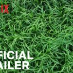 En la hierba alta (In the Tall Grass) – Soundtrack, Tráiler