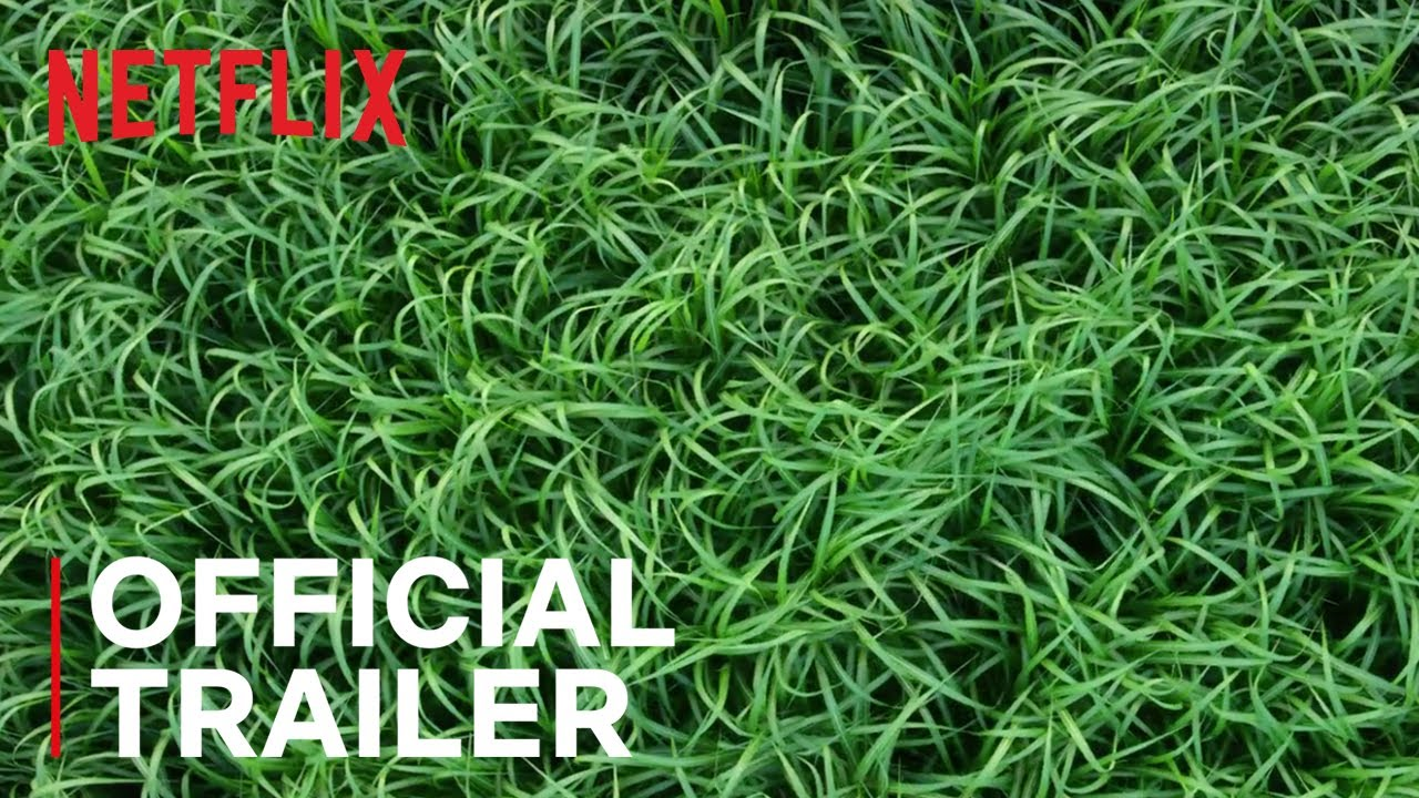 En la hierba alta (In the Tall Grass) – Soundtrack, Tráiler