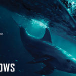 SOS: Mar de Sombras (Sea of Shadows), Documental – Tráiler