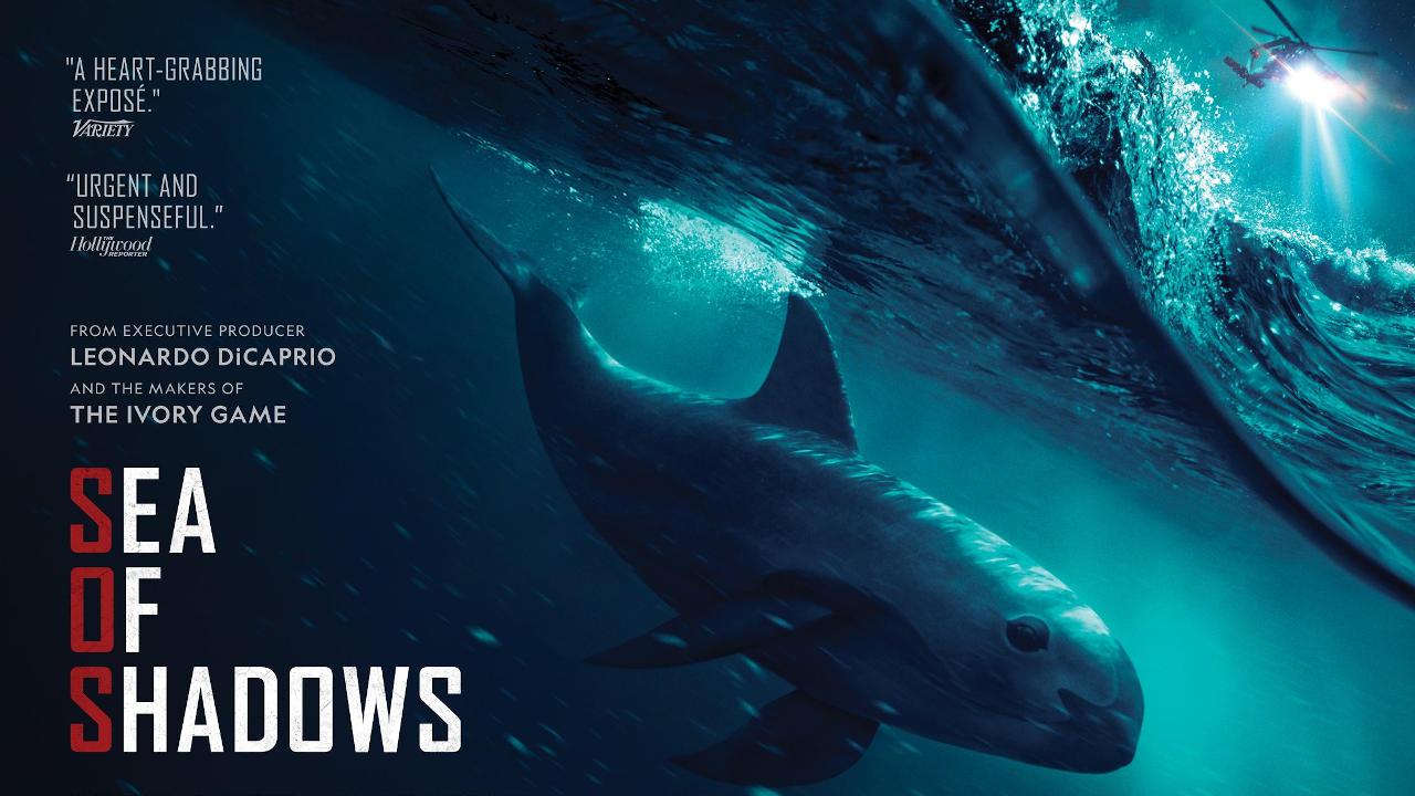 SOS: Mar de Sombras (Sea of Shadows), Documental – Tráiler